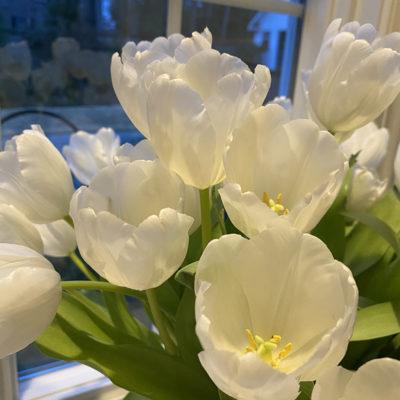 Hands on Workshop                    Beautiful Blooms & Bellinis